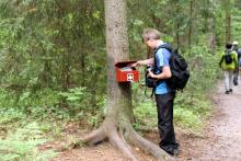 Luontopolulla olevat laatikot tutustuttavat paikalliseen eläimistöön.